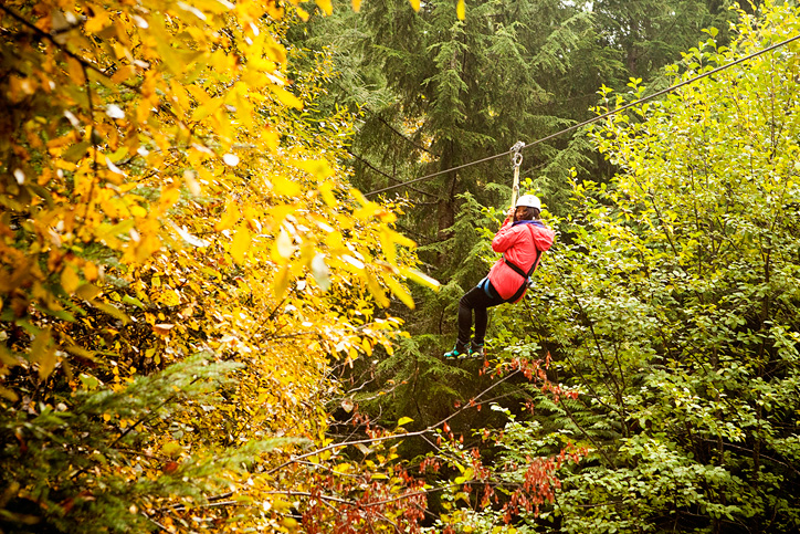 5 Reasons to go Fall Ziptrekking