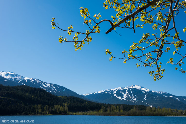 5 Reasons to Visit Whistler in the Spring